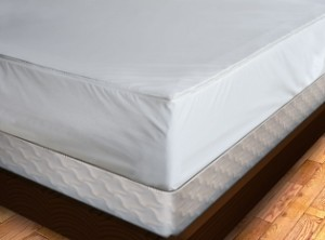 Premium Bed Bug Proof Mattress Cover