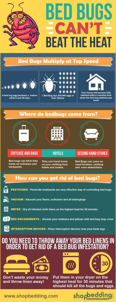 bed bugs infestation can be gotten rid of from linen